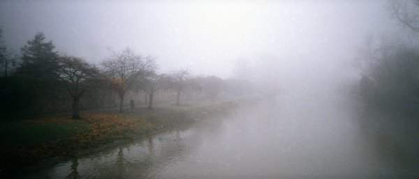 Fog at River Soar in Abbey Park, Leicester